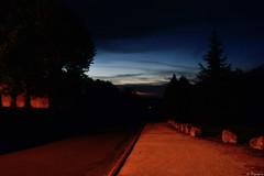 Nocturne (3) (Mystycat =^..^=) Tags: france route ciel arbres paysage soir nuit charente