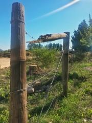 De-Fencing - HFF! (Betsie Nel) Tags: broken fence farm samsung fencedfriday
