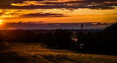 A different day! (Peter Leigh50) Tags: sunset field train golden 66 class hour freight dbs ews kibworth