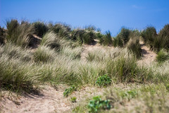 Dunes (John Garfield-Roberts) Tags: crosby beach sand dunes merseyside sky coast north west
