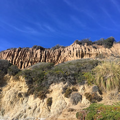 IMG_8694 (emilie raguso) Tags: beach socal southerncalifornia elmatador 2016
