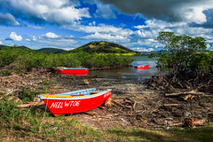 Mangrove boats (jmsey59) Tags: color fiji boats mangrove