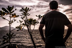Looking onto the water (yusof majid) Tags: abigfave sand evening cloudsstormssunsetssunrises beacheslandscapes sunset island alone nature plants beach sky water sea view