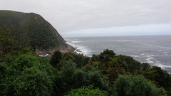 Coastline (Rckr88) Tags: ocean africa travel sea cliff green nature water southafrica outdoors coast south cliffs coastal greenery coastline gardenroute tsitsikamma easterncape rockycoastline tsitsikammanationalpark