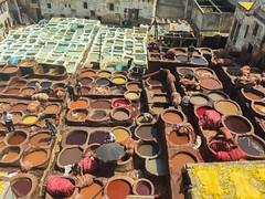 IMG_6322 (theamericanuniversityofparis) Tags: explorer morocco fez graduate sufi undergraduate studytrip fs magc fsboulemane fieldexperience culturalprograms