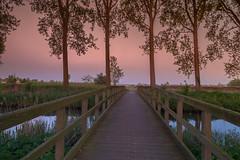 Damme - Zuidervaartkanaal after Sunset (Roland B43) Tags: bridge trees canal belgium damme zuidervaartkanaal