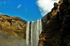 (Mister Brooks) Tags: waterfall iceland rainbow oiseaux islande arcenciel