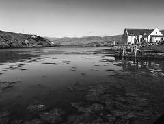 working paradise (dougfot) Tags: sea bw mamiya port island scotland 645 harris f11 ilford fp4 hebrides 1125 scalpay 125asa polariser douggoldsmith