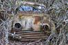 _DSC5827-1 (f.boberg74) Tags: båstnäs bilvrak bilskrot töcksfors färger gamla bilar