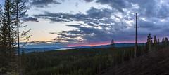 Summer night (Jens Petter Larsen) Tags: sommer natur solnedgang knappberget