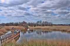 Tablas de Daimiel (stephenhaworth) Tags: bridge sky water clouds puente agua cielo marisma hdr nube ciudadreal campodecalatrava parquenacional daimiel tablasdedaimiel nikond90