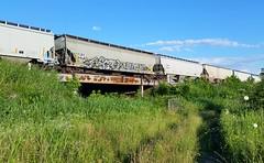 MECRO & YUTHE (BLACK VOMIT) Tags: bridge car club train graffiti cool crew cult dudes hopper freight cdc gain yuth mecro grainer yuthe
