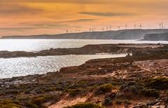 Wind farm on coast of Eyre Peninsula (Sougata2013) Tags: sunset nature landscape colours australia southaustralia windturbine portlincoln eyrepeninsula capecarnot