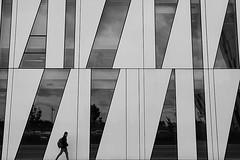 Windows and white (Birdhouse camper) Tags: street blackandwhite scale canon copenhagen denmark eos blackwhite 7d