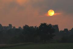 Sunrise and moving cloud (ShiyuZhuang) Tags: cloud nature sunrise copenhagen moving wetland herlev
