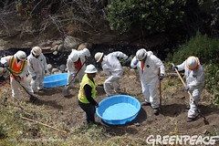 Oil Spill Hazmat Cleanup (Greenpeace USA 2016) Tags: oil spill pipeline fossilfuel ventura california pollution cleanup crude ca usa