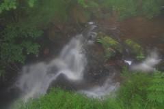 Parque natural de #Gorbeia #Orozko #DePaseoConLarri #Flickr -102 (Jose Asensio Larrinaga (Larri) Larri1276) Tags: 2016 parquenatural gorbeia naturaleza bizkaia orozko euskalherria basquecountry