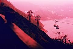 Hong Kong (jenn4u2luv) Tags: city travel light film 35mm hongkong 50mm pentax streetphotography 35mmfilm neonlights spotmatic velvia100 expired victoriapeak oceanpark expiredfilm fujivelvia supertakumar