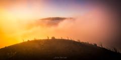 Entre las nubes (Javier Martnez Morn) Tags: clouds fog nature landscape sunset atardecer niebla nubes alisios birigoyo lapalma la palma mountain montaa dusk lu luz light amazing ocaso volcan volcano sony sonyalpha a600