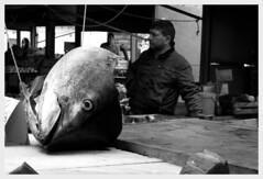Tonno. (Infogab) Tags: people italy italia market persone sicily palermo mercato sicilia palerme