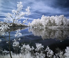 Winter? (McSnowHammer) Tags: blue trees sky lake reflections gteborg ir mirror branches gothenburg frosty infrared vstra lngvattnet