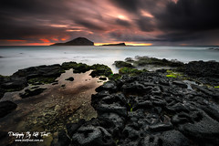 Makapuu (Kiall Frost) Tags: ocean longexposure storm black color colour green beach water pool rock clouds sunrise hawaii lava moss oahu le makapuu kiallfrost