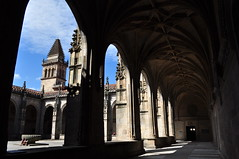 Clotre gothique, cathdrale de St Jacques de Compostelle, province de La Corogne, Galice, Espagne. (byb64) Tags: santiago spain europa europe cathedral gothic eu unescoworldheritagesite unesco cathdrale espana santiagodecompostela cloister espagne renaissance gothique spanien kloster spagna ue dcor gotico claustro compostelle clotre catedrala santiagodicompostela saintjacquesdecompostelle artgothique gothiqueflamboyant xvie provinciadelacorua provincedelacorogne provinceofacorua