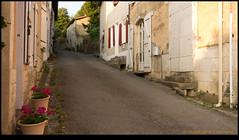 130724-01382-RX100.jpg (hopeless128) Tags: france eurotrip poitoucharentes 2013 nanteuilenvallee nanteuilenvallée