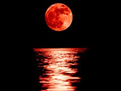 月圆之夜,你睡得好吗?