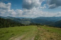 DSCF8261 (p.skripichnikov) Tags: travel mountain mountains ukraine nuture   karpati karpaty   outdoorm