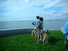 DeerIsland09-25-2011015