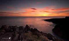 Dawn Panorama (Canon Queen Rocks (650,000 + views)) Tags: ireland sea sky panorama sun seascape water colors clouds sunrise reflections coast scenery rocks waves colours horizon scenic greystones calm coastline irishsea cowicklow