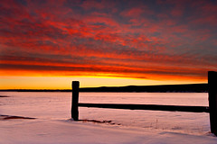 Fence, Sunrise, Chatfield (mclcbooks) Tags: sky lake snow ice clouds sunrise fence landscape colorado hff chatfieldstatepark