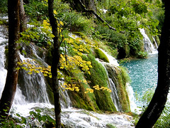 Seeking Science around Plitvice Lakes (altamons) Tags: trip travel vacation holiday water holidays europe croatia science unescoworldheritagesite waterfalls geology travertine plitvice genomics plitvicelakes altamons seekingscience