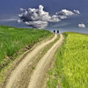 Path of quiet (Nespyxel) Tags: field landscape day quiet cloudy path tuscany campo siena toscana valdorcia sentiero twopeople paesaggio cammino quiricodorcia nespyxel stefanoscarselli tufototureto