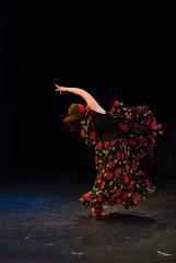 La Verbena Escuela de Danza   Funcin (Stephanie Cabrera Fotos) Tags: chile nikon capoeira danza movimiento flamenco cuerpo laverbena tinku escueladedanza stephaniecabrera d7000 nikond7000 vision:sky=0665 vision:outdoor=0887 vision:dark=0833 fernandacires
