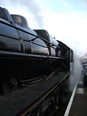 DSCF5059 (John W. Davies) Tags: riley steamtrain steamtrains lms 460 steamdreams steamlocomotives ianriley black5 45407 claphamhighstreet thelancashirefusilier cathedralsexpress 44871 stanierblack5 thecathedralsexpress lancashirefusilier mainlinesteam lmsblack5 1z82 steamtour mainlinesteamtour whitecliffstour rileyblack5 rileysteamlocomotives whitecliffschristmasluncheon