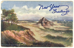 "New Year Greetings postcard- ""Rough Seas on the Devon Coast"" (Rescued by Rover) Tags: rock boston coast postcard january devon rough cp torquay raphael postale seas thatcher carte tuck 1907 oilette"