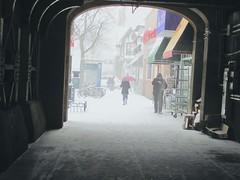 Arctic Vortex (sobergeorge) Tags: nyc myneighborhood foresthills winterstorm newyorkcityneighborhood arcticvortex sobergeorge localneighborhood bysobergeorge vpu2 vpu3 vpu4 vpu5 vpu6 vpu7 vpu8 vpu9 vpu10