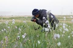 #روضة#الخفس (suleimanahmed) Tags: روضة الخفس uploaded:by=flickrmobile flickriosapp:filter=nofilter