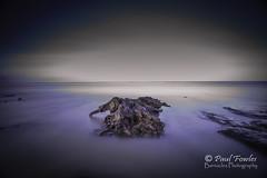 Tywyn Peat 2 (Paul Fowles Photography) Tags: tree beachs stumps tywyn bigstopper tywynpeatbog