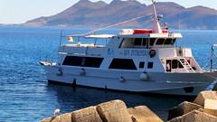 Egadi Escursioni (EgadiEscursioni) Tags: trip travel holiday islands boat barca tour yacht sicily motorboat trapani favignana egadi levanzo isole marettimo escursione escursioni motonave intrepido