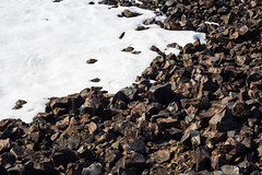 IMG_2404 (d.schaefer) Tags: winter norway hütte norwegen röros valhall øvensenget