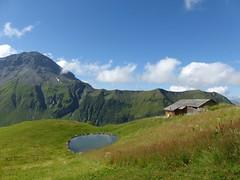 Albristhorn (2763m) (golden road) Tags: alps schweiz switzerland suisse hiking august svizzera wandern bernois berner ch bernese hillwalking oberland simmental cantonbern rauflihorn fermeltal rauflihore bluttlighorn bluttlighore