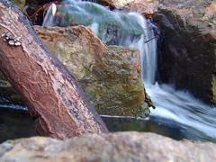 Rock & Tiny Waterfall (See El Photo) Tags: california wood blue red brown white motion color colour green nature wet water rock digital creek river ilovenature outside outdoors photo waterfall movement colorful colore hard stick couleur mothernature speckled specks
