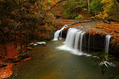 Drama Queen (MarcusDC) Tags: autumn waterfall kentucky fallfoliage bigsouthfork sheltoweetrace princessfalls