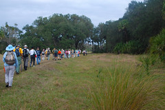 Culpepper Bend (floridahikes) Tags: river geneva hiking stjohnsriver stateforest chuluota littlebigecon