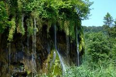 Parc nacional de Plitvice (21) / Lika / Croacia (Ull mgic) Tags: naturaleza nature water landscape waterfall agua fuji croatia natura paisaje lika bosque cataratas aigua croacia cascada bosc plitvice paisatge plitvika xt1 parcnacional