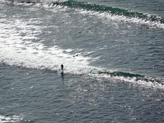 surf baby surf (francesca.clemente) Tags: ocean california sky dog flower cars la us losangeles surf pacific jazz palm oldtimer redondo portofino saxophone redondobeach palosverdes mannekenpis statiuniti alvas theskyisthelimit