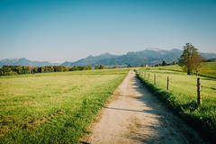 A Bavarian Landscape (freyavev) Tags: mountains green nature fence germany landscape bayern deutschland bavaria shadows outdoor path vsco
